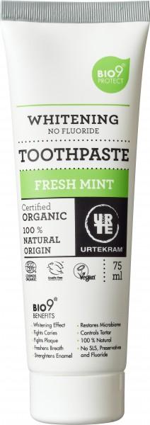 fresh_mint_toothpaste_150_dpi__urtekram.jpg